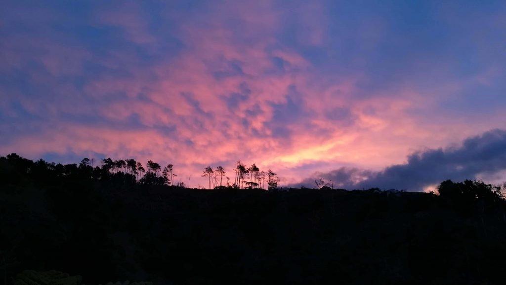 Kurz vor Sonnenaufgang in unserem Garten